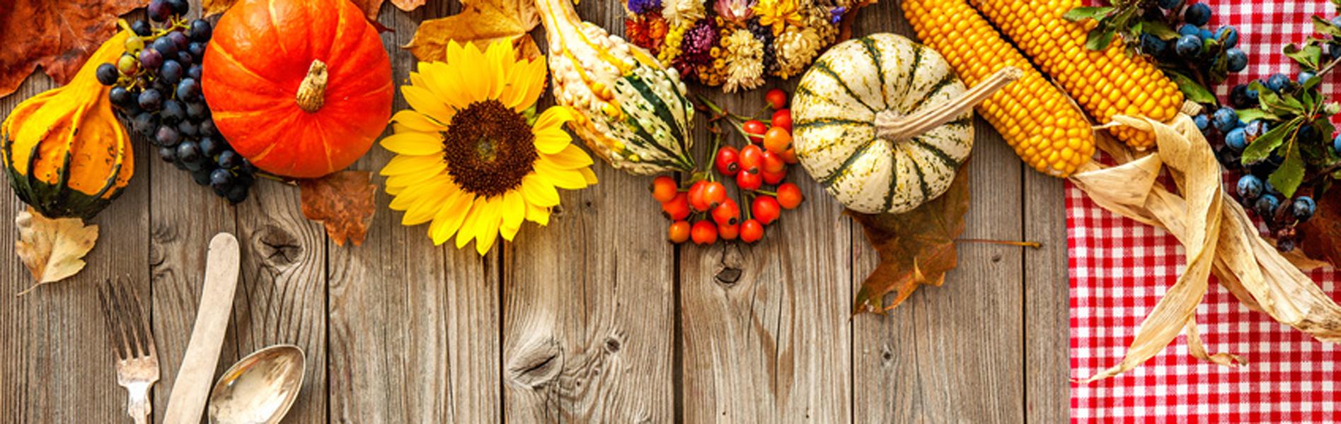 Saisonales - Herbst
